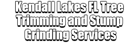 Kendall Lakes FL Tree Trimming and Stump Grinding Services Logo-We Offer Tree Trimming Services, Tree Removal, Tree Pruning, Tree Cutting, Residential and Commercial Tree Trimming Services, Storm Damage, Emergency Tree Removal, Land Clearing, Tree Companies, Tree Care Service, Stump Grinding, and we're the Best Tree Trimming Company Near You Guaranteed!