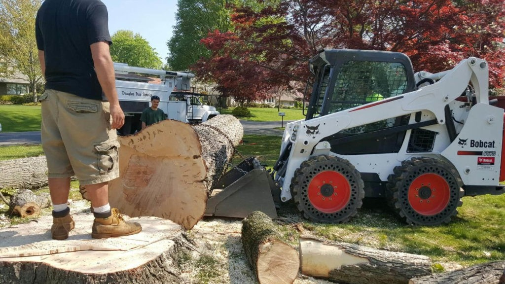 Services-Kendall Lakes FL Tree Trimming and Stump Grinding Services-We Offer Tree Trimming Services, Tree Removal, Tree Pruning, Tree Cutting, Residential and Commercial Tree Trimming Services, Storm Damage, Emergency Tree Removal, Land Clearing, Tree Companies, Tree Care Service, Stump Grinding, and we're the Best Tree Trimming Company Near You Guaranteed!